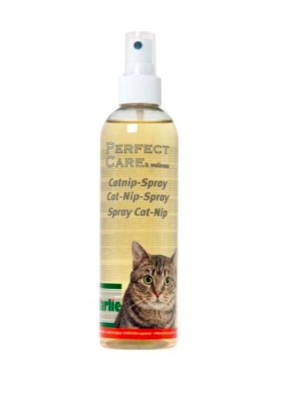 Kattetilbehør